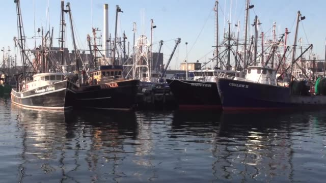 new bedford harbor on cape cod - new bedford stock videos & royalty-free footage