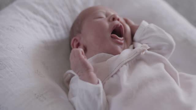 new born baby - 0 11 mesi video stock e b–roll