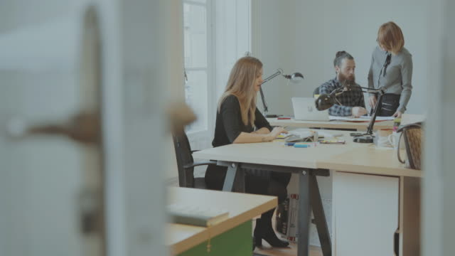 New business team works in the startup office