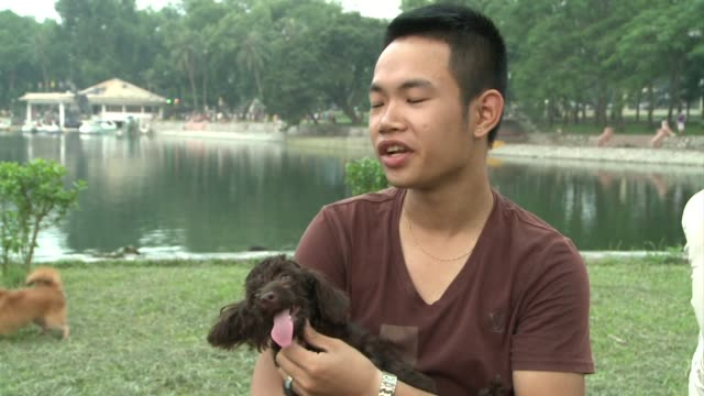 a new fashion for having dogs as pets rather than for dinner is taking off in vietnam hanoi vietnam - pampered pets stock videos and b-roll footage