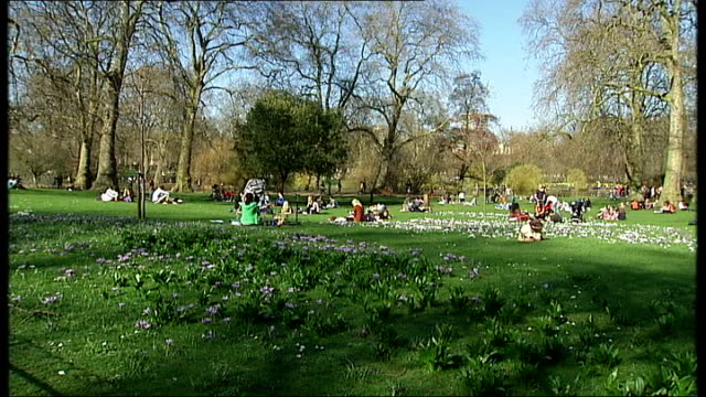 new hayfever treatment promises relief for sufferers cutaways various of people in the park enjoying the sunshine hazy sun in the sky - t in the park stock-videos und b-roll-filmmaterial