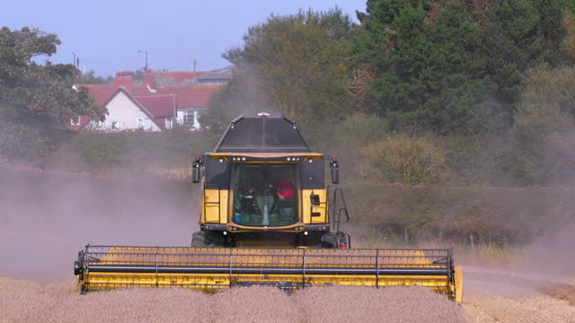 new holland combine harvester, cayton bay, north yorkshire, england - combine harvester stock videos & royalty-free footage