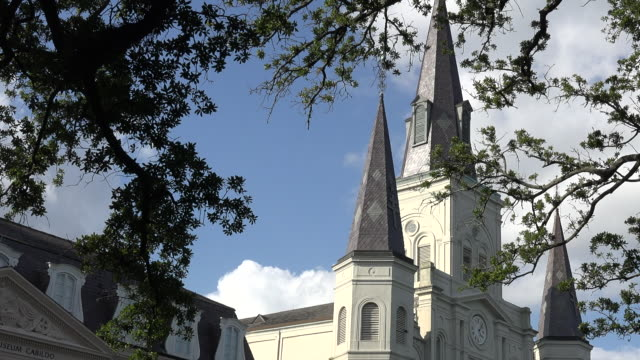 new orleans cathedral through leaves pan right - steeple stock videos & royalty-free footage