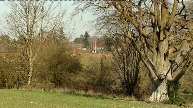 new planning rules set out by government; location unknown: ian vickerage interview sot berkshire: newbury: sun shining through tree branches... - newbury inghilterra video stock e b–roll