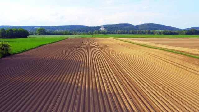 new plowed potato field and walhalla memorial in spring - raw potato stock videos & royalty-free footage