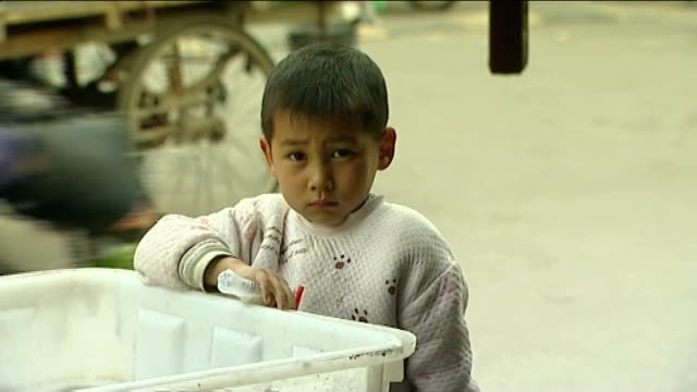 stockvideo's en b-roll-footage met new strain of bird flu kills 20 people in taiwan china beijing int zhu bao bao standing by plastic crate in street zoom zhu huai hai set up shots... - vogelpestvirus