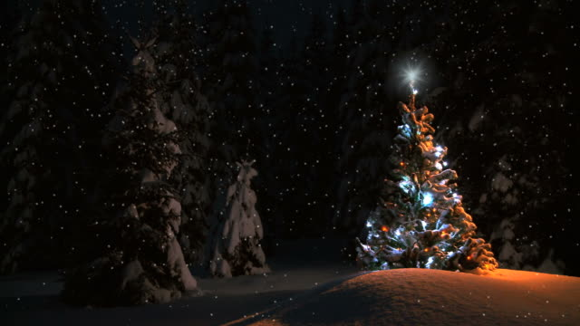 hd montage: new year card - christmas tree stock videos & royalty-free footage