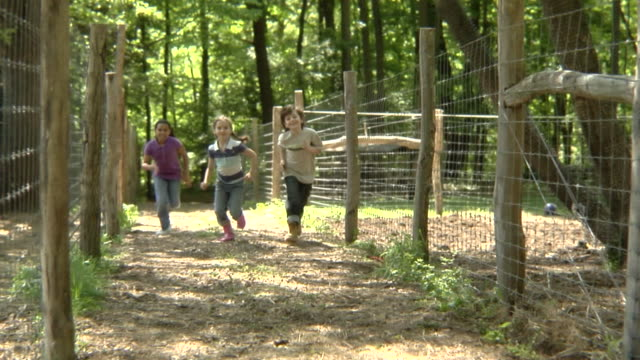 stockvideo's en b-roll-footage met ws, slo mo, usa, new york, bedford hills, three children (6-9 years) running between fenced off paddocks - 6 7 years