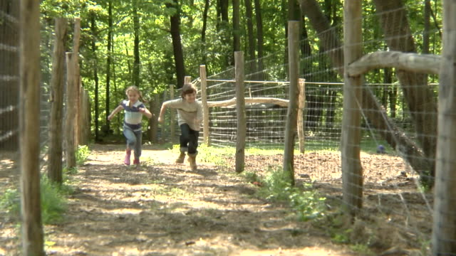 stockvideo's en b-roll-footage met ws, slo mo, usa, new york, bedford hills, two children (6-9 years) running between fenced off paddocks - 6 7 years