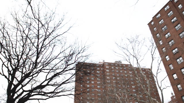 new york city public housing project - 公営アパート点の映像素材/bロール