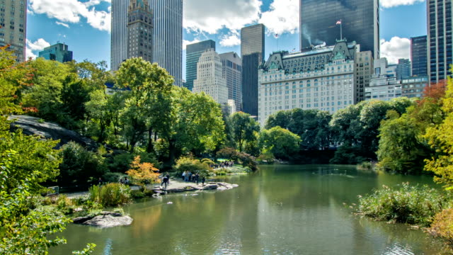 new york city, skyline from central park - central park manhattan stock videos and b-roll footage