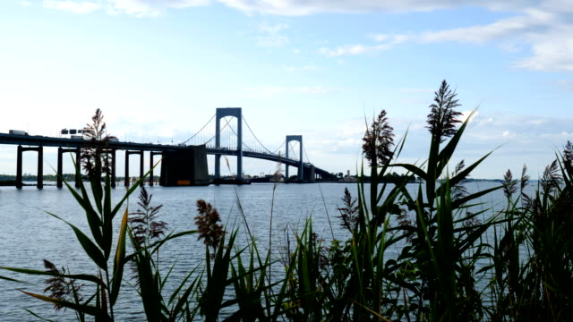 new york city skyline - long island stock videos & royalty-free footage