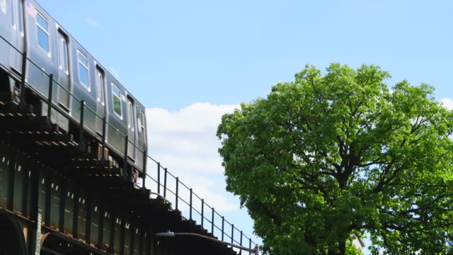 new york city subway trains run on the elevated railway track beside the big fresh green tree at queens ny usa on may 25 2019. - hochbahn passagierzug stock-videos und b-roll-filmmaterial
