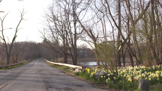 new york country road pan shot, spring. - vector stock videos & royalty-free footage
