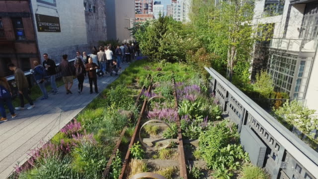 new york highline park - environmental conservation stock videos & royalty-free footage