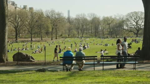 new york manhattan people enjoy spring in central park - public park stock videos & royalty-free footage