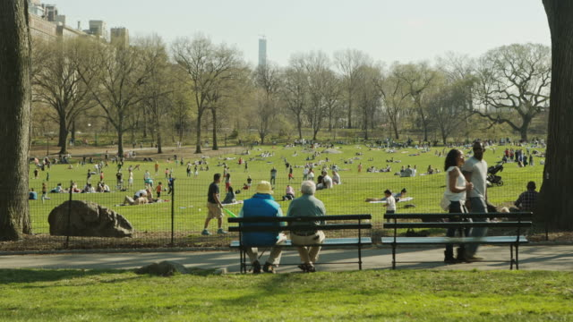 new york manhattan people enjoy spring in central park - summer heat stock videos & royalty-free footage