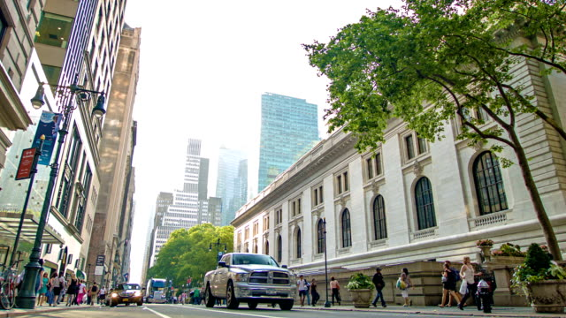 new york public library - stephen a. schwarzman building - fifth avenue stock videos and b-roll footage