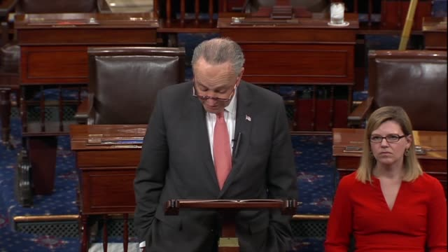 stockvideo's en b-roll-footage met new york senator chuck schumer says beyond troubling statements from the white house and allies in the media president donald trump had mused about... - geallieerde mogendheden