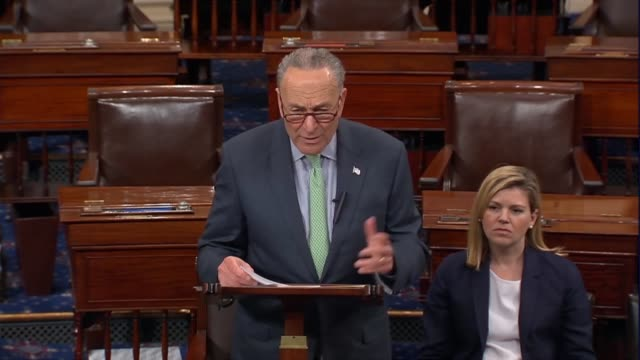 New York Senator Chuck Schumer says many believe that ZTE could be a mechanism for spying on the American military or different economic parts the...