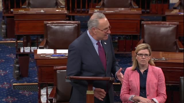 new york senator chuck schumer says president donald trump tweeted he would look into internet published blueprints for 3d plastic printed firearms... - controllo delle armi da fuoco video stock e b–roll