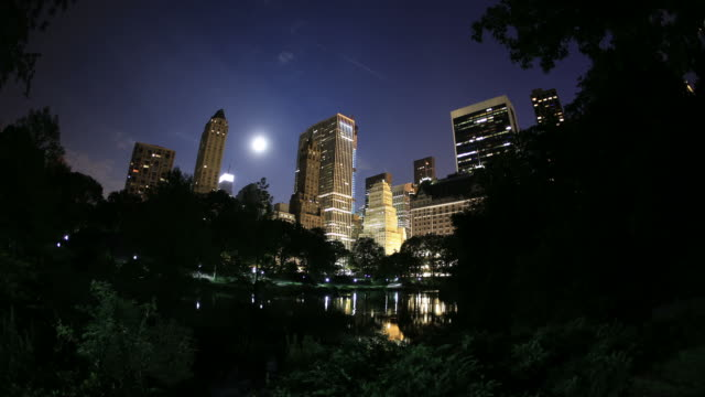 new york skyline from central park - central park manhattan stock videos & royalty-free footage