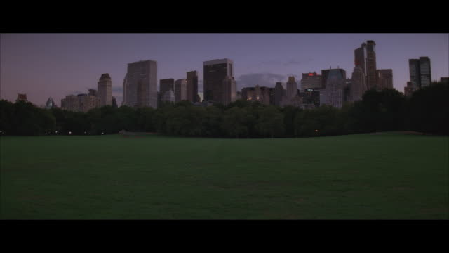 vídeos de stock, filmes e b-roll de ms, new york skyline, lawn of central park in foreground, new york city, new york, usa - formato letterbox