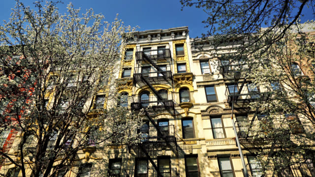 new york spring. cherry blossoms. typical residence building - flat stock videos & royalty-free footage