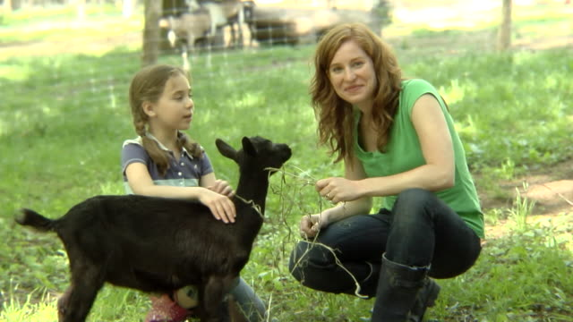MS, USA, New York State, Bedford Hills, mother and daughter (6-7 years) patting goat on paddock, portrait