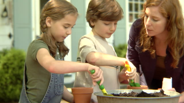 vídeos de stock e filmes b-roll de ms, usa, new york state, bedford hills, woman helping son and daughter (6-9 years) plant seeds in pots - vaso de flor