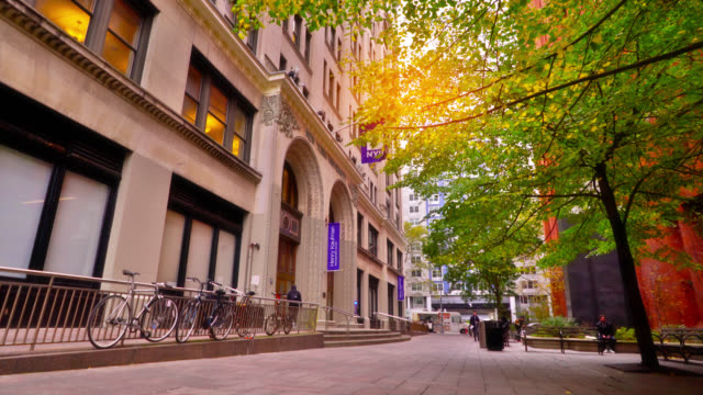 new york university campus. nyu students' bikes. quiet square with trees. sunny day out. - stone object stock videos & royalty-free footage