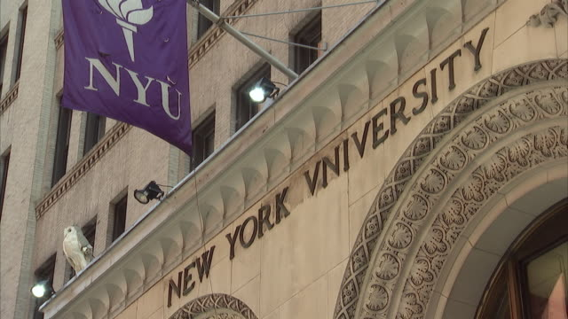 ms new york university sign and flag above the entrance / new york city, new york, usa  - new york university stock videos & royalty-free footage
