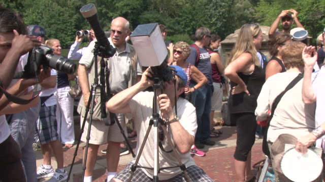 vídeos y material grabado en eventos de stock de new yorkers take to central park to view the solar eclipse / views from the bethesda fountain and terrace one of the most popular places to view /... - fuente bethesda