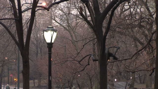 new yorkview of outdoor lamps in new york united states - unknown gender stock videos & royalty-free footage