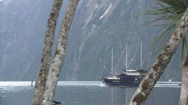 new zealand. a boat passing by on milford sound. editorial use only. - new zealand stock-videos und b-roll-filmmaterial