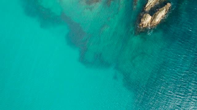 vídeos y material grabado en eventos de stock de costa de nueva zelanda. - fondo turquesa
