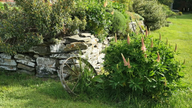New Zealand garden with rock wall