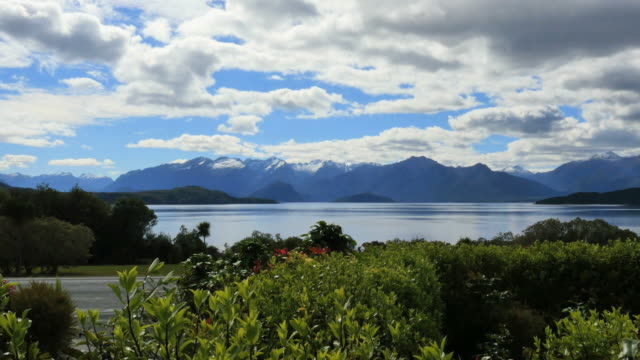 new zealand lake manapouri beyond plants - new zealand southern alps stock videos & royalty-free footage