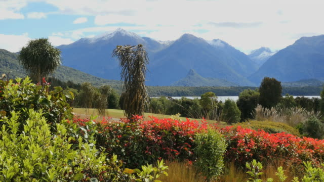 new zealand lake manapouri - 整形式庭園点の映像素材/bロール