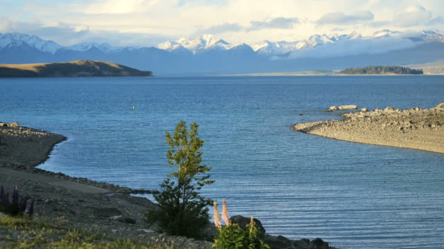 new zealand lake tekapo and mountains - coastal feature stock videos & royalty-free footage