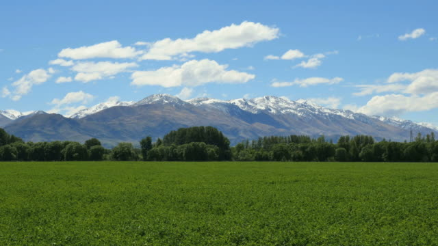 new zealand mountains with green field - new zealand southern alps stock videos & royalty-free footage