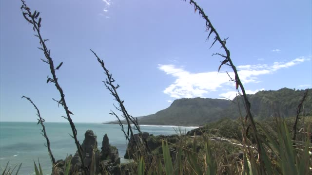 New Zealand, Paparoa National Park. Looking out to the Tasman Sea.