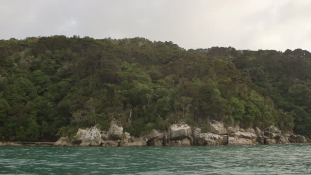 vídeos de stock e filmes b-roll de new zealand shoreline pov from boat - plano geral