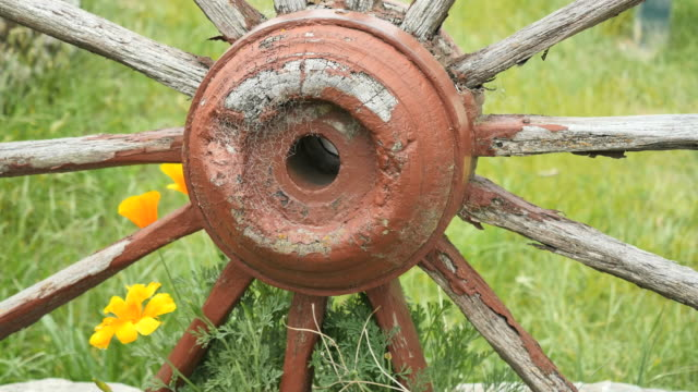 new zealand wagon wheel hub - cart stock videos & royalty-free footage