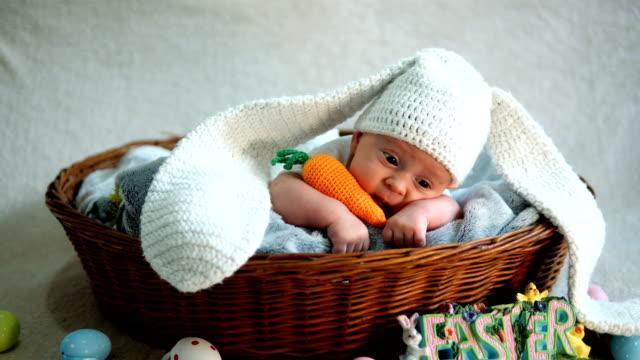 vídeos de stock, filmes e b-roll de orelhas e cauda desgastando do coelho do bebé recém-nascido em uma cesta. - cesta