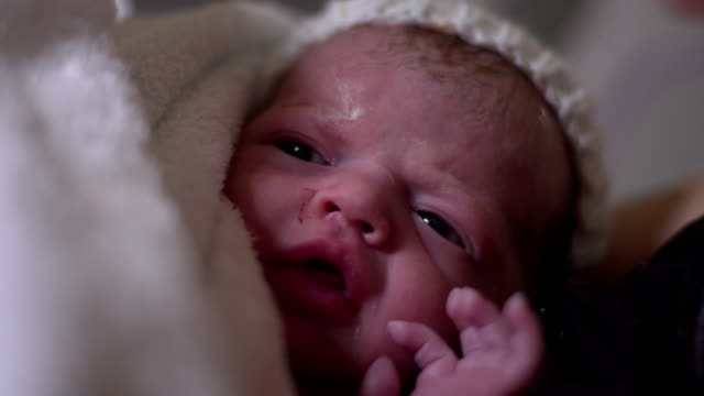 4k: newborn baby in hospital maternity delivery suite - childbirth stock videos and b-roll footage