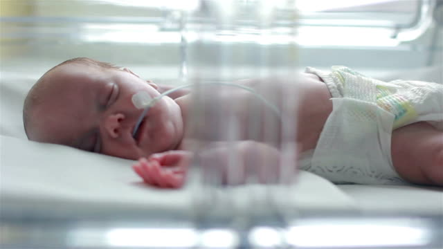 newborn in isolette - oxygen stock videos & royalty-free footage