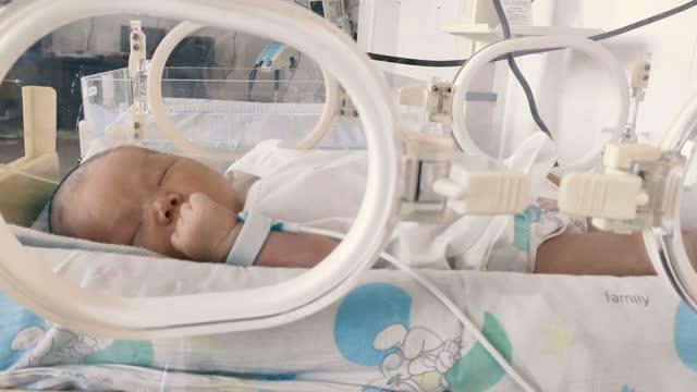 newborn inside hospital incubator - babies only stock videos & royalty-free footage