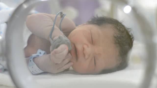 newborn - new life stock videos and b-roll footage
