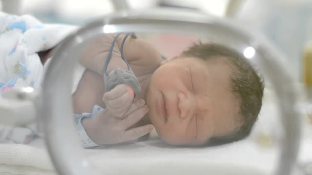 newborn - newborn stock videos & royalty-free footage